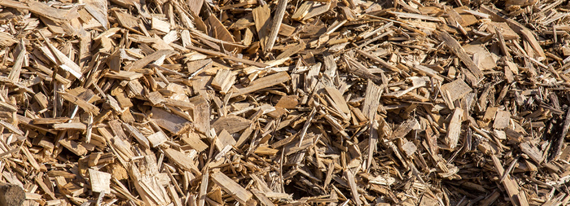 valorisation et recyclage des dechets de bois du batiment