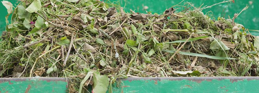 valorisation et recyclage dechets verts